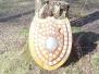 2005-10 Stilwell Shield